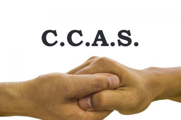 ccasA3B26565-9EE0-CD96-C663-B6C2DB1992A4.jpg